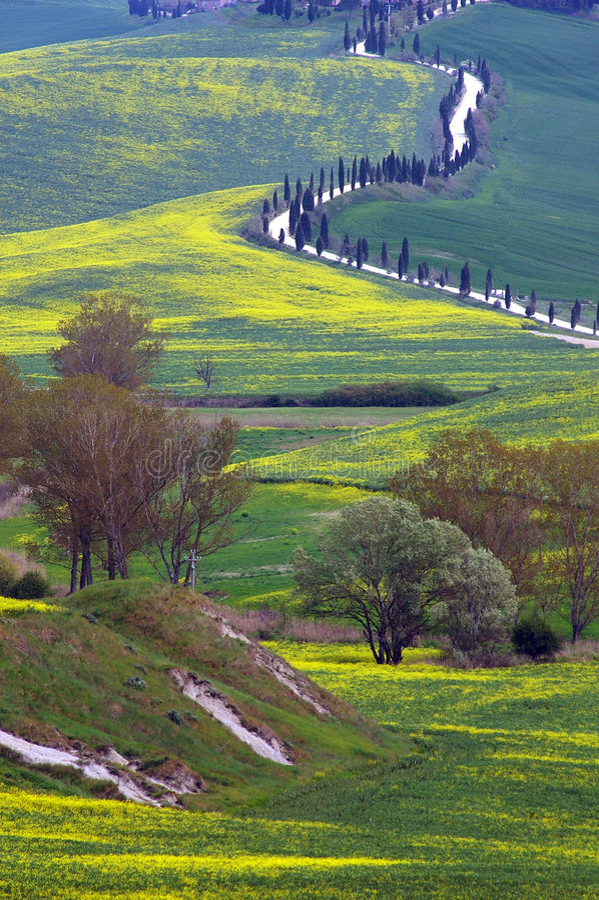 orcia Тоскана ландшафта d val стоковые фото