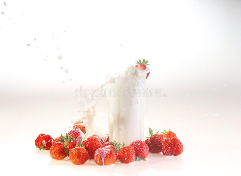 Ordeñe el chapoteo en un vidrio, leche y una fresa en un backgro blanco fotografía de archivo