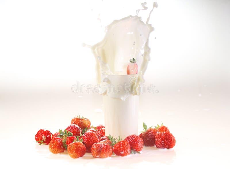 Ordeñe el chapoteo en un vidrio, leche y una fresa en un backgro blanco fotos de archivo libres de regalías