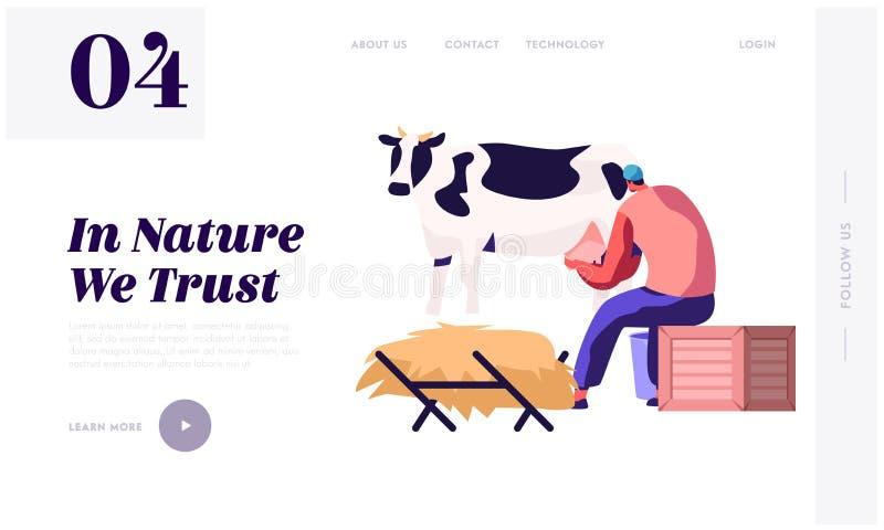 Ordenhadora Woman na vaca de ordenha uniforme Leite e fazendeiro de leiteria Agriculture Products, cultivando o funcionamento da  ilustração royalty free