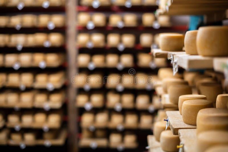 Ordenhe o queijo no prateleiras imagem de stock royalty free