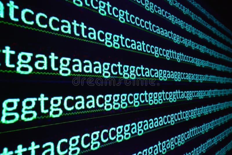 Ordinamento del gene immagini stock