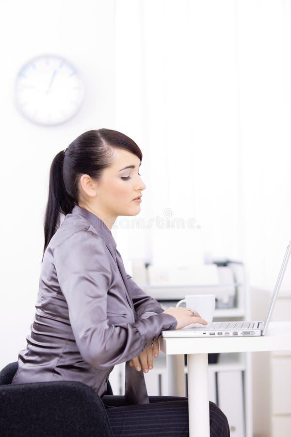 Download Ordinateur Portatif D'ordinateur De Femme D'affaires Utilisant Image stock - Image du employé, femelle: 8658991