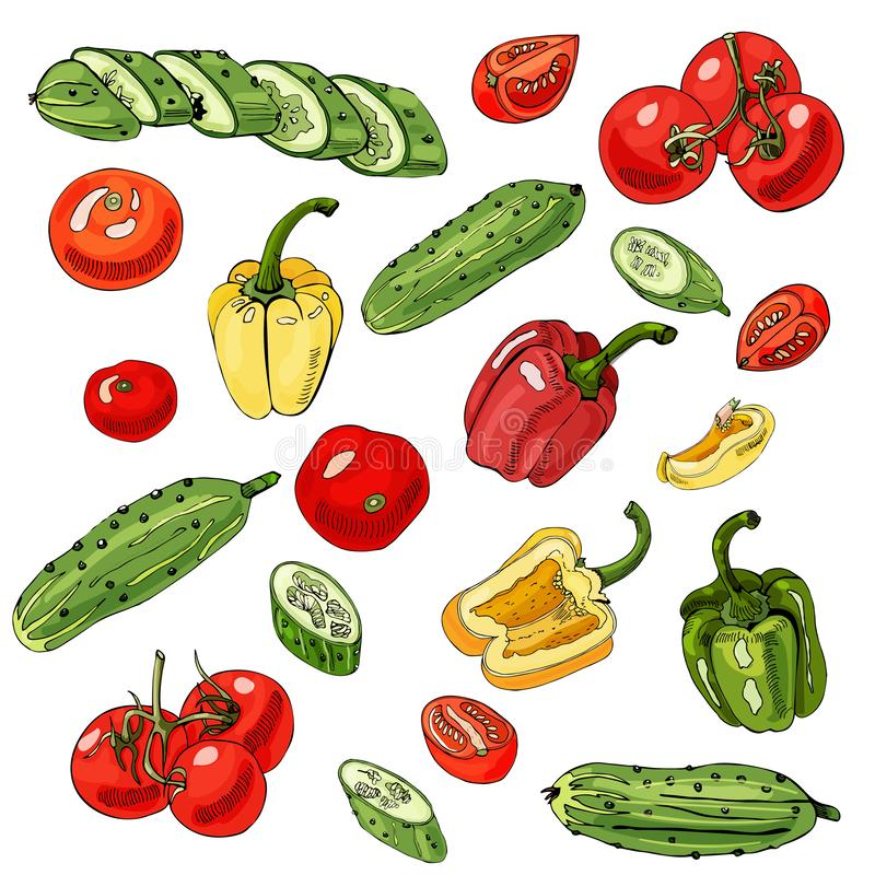 Ordinato delle verdure Pomodori, cetrioli rossi, verdi e gialli e peperoni isolati su fondo bianco Intero e objec affettato royalty illustrazione gratis