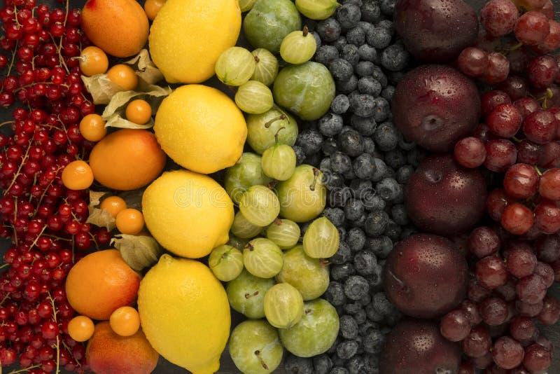 Ordna av frukter i regnbågefärger royaltyfria foton