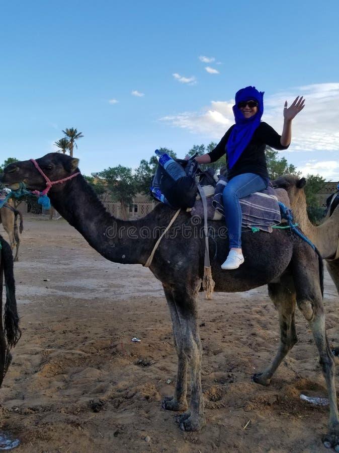 Ordna till för en kamelTrek i Sahara för att se solnedgången! arkivfoton