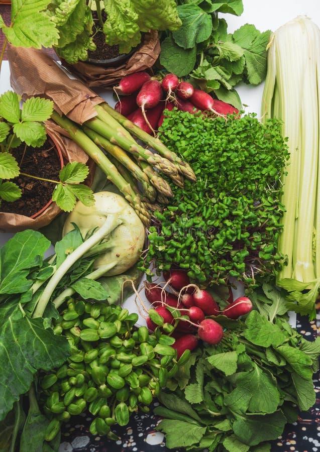 Ordning av olik smaklig grönsakbakgrund sund begreppsmat Sk?rd fotografering för bildbyråer