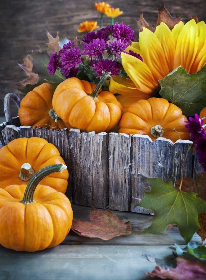 Ordning från pumpa, blommor och lönnlöv royaltyfri fotografi