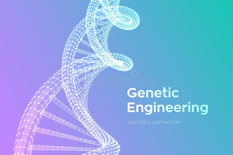 Ordre d'ADN Maille de structure de molécules d'ADN de Wireframe Calibre editable de code d'ADN Concept de la science et technolog illustration de vecteur