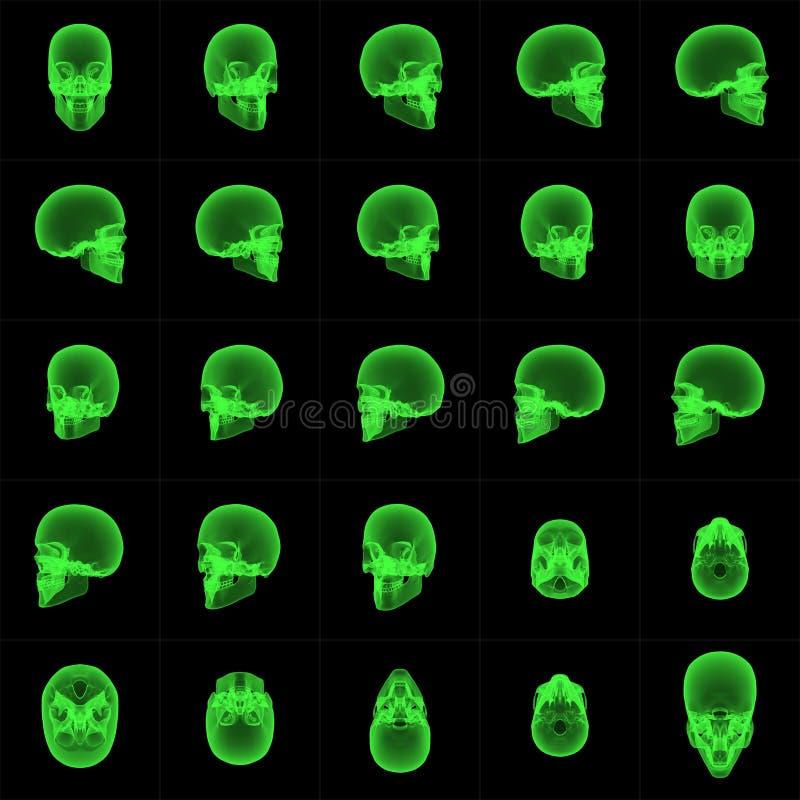 Ordre de crâne de rayon X illustration de vecteur