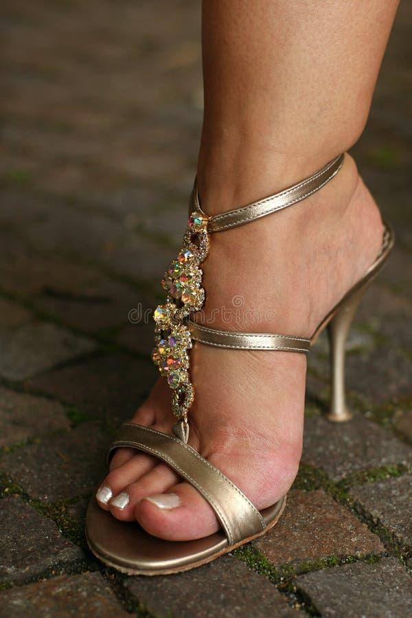Download Ordynariusza Partyjna Butów Kobieta Zdjęcie Stock - Obraz złożonej z hefner, diamondback: 13336722