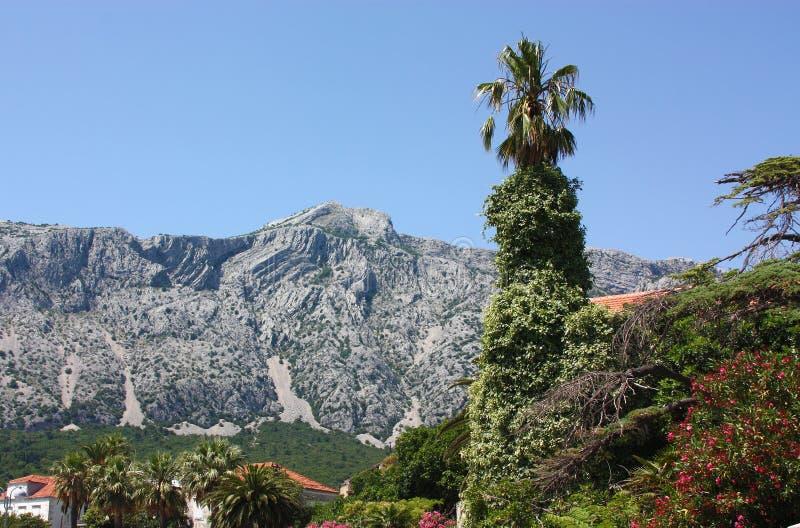Download Orebic, Croatia imagen de archivo. Imagen de cielo, verano - 25416473