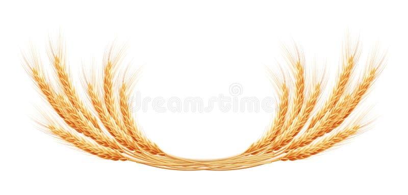 Orecchie del grano con spazio per testo ENV 10 illustrazione di stock