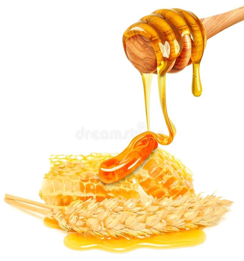 Orecchie del grano e del miele fotografie stock libere da diritti