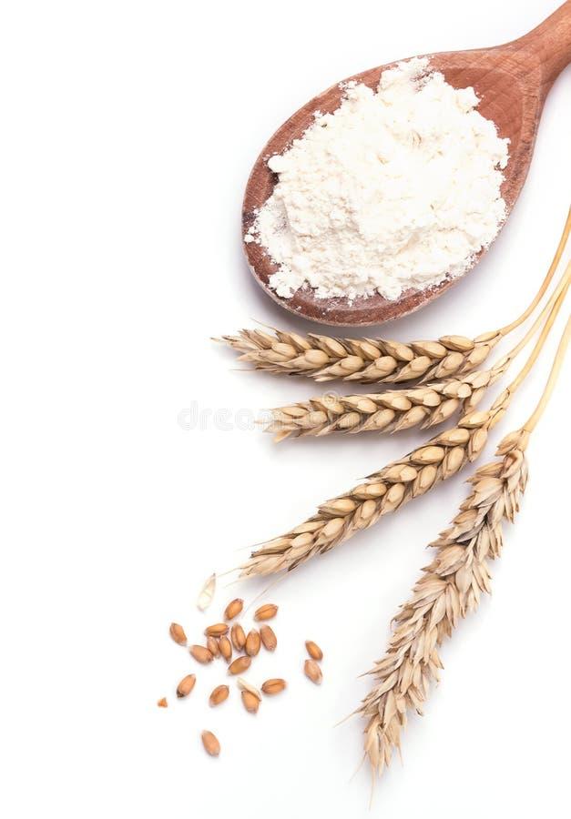 Orecchie di grano e di farina sui precedenti bianchi immagini stock