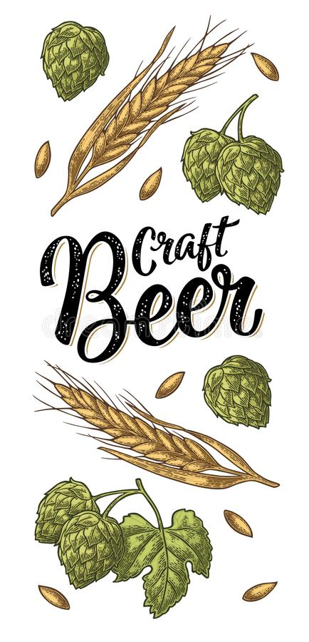 Orecchie di orzo, delle foglie e dei coni di incisione di luppolo Iscrizione della birra del mestiere illustrazione vettoriale