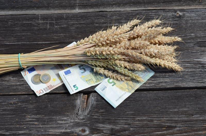 Orecchie mature mazzo del grano e banconota dei soldi dell'euro immagini stock