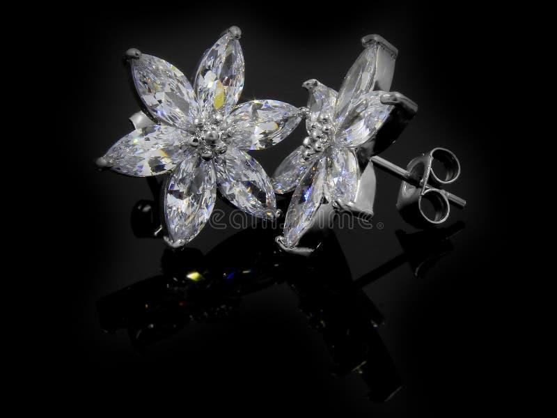 Orecchini dei gioielli per le donne - acciaio inossidabile e zirconi cubici fotografie stock