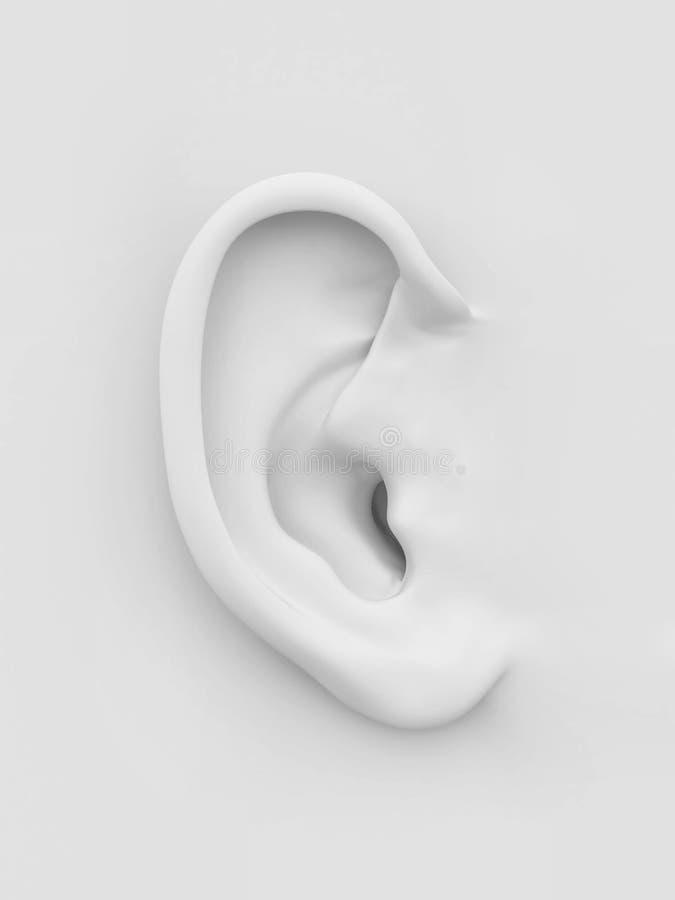 Orecchio umano molle bianco. 3d illustrazione di stock