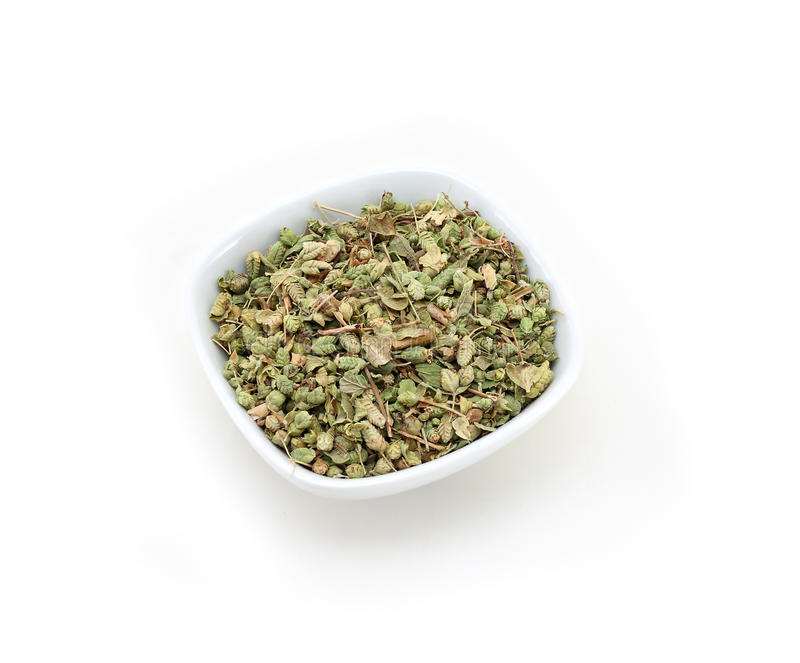 Download Oregano stock image. Image of detail, fragrant, group - 16869835