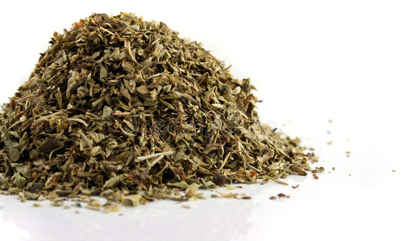 Oregano on an isolated background royalty free stock photo