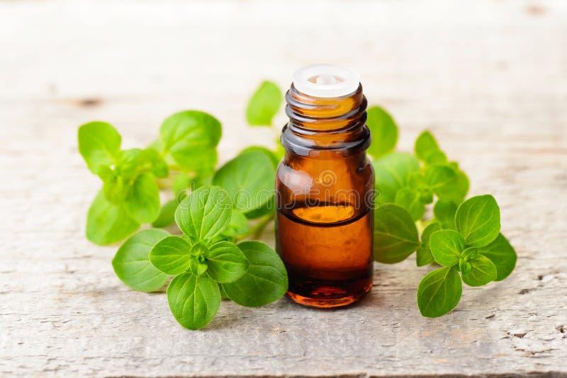 Oregano istotny olej i świezi oregano liście na drewnianej desce fotografia stock
