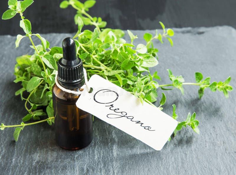 Oregano oil bottle with label royalty free stock photos