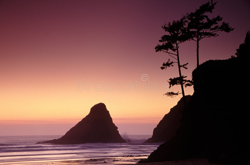 Oregon brzegowi portrety obrazy stock