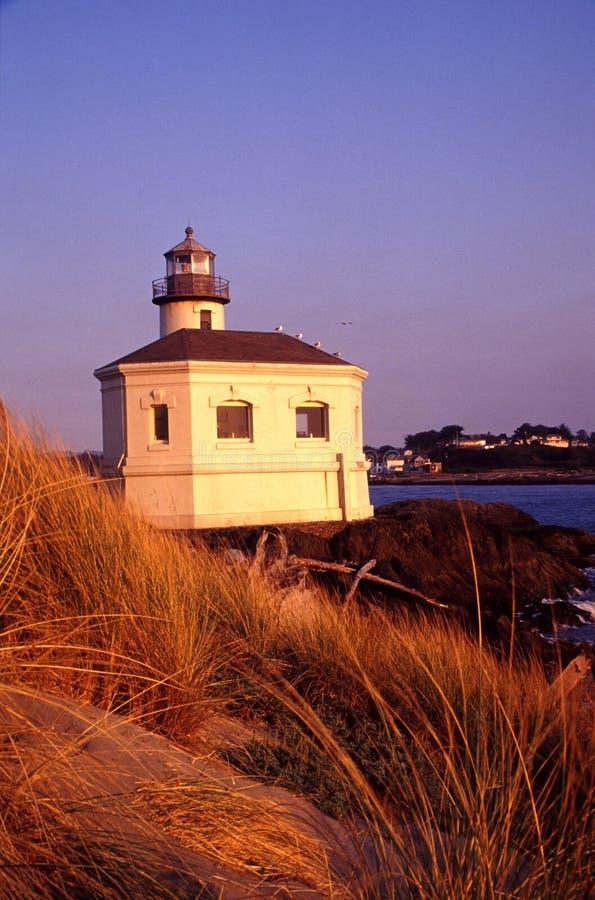 Oregon coast portraits royalty free stock images