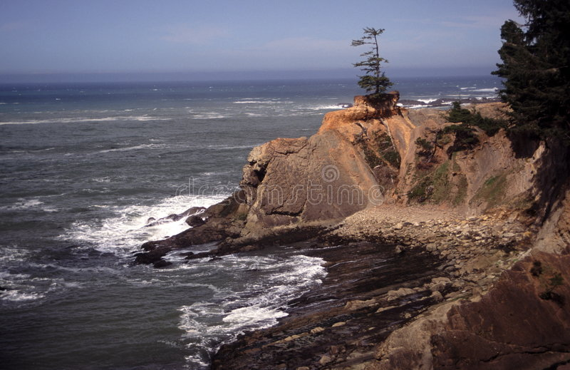 Download Oregon coast portraits stock image. Image of home, head - 2252385