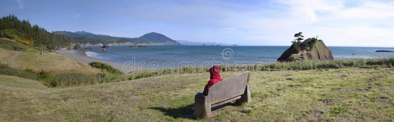 Download Oregon Coastline Panorama. Royalty Free Stock Photos - Image: 25394658