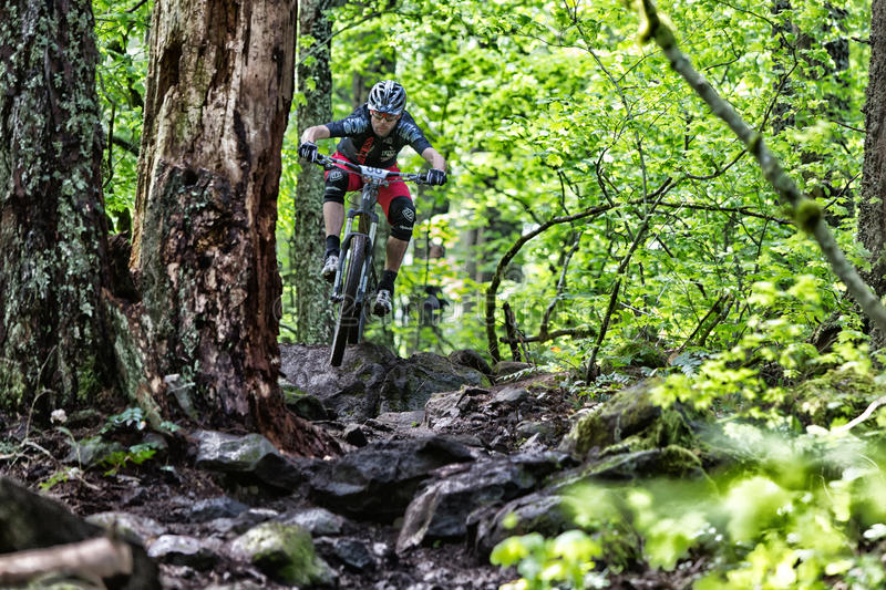 Oregon 2013 Enduro - John Frey stockbilder