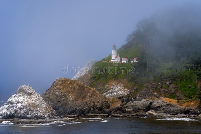 Oregon för Heceta huvudfyr kust royaltyfri fotografi