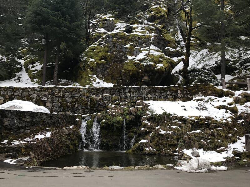 Oregon-Höhlen lizenzfreie stockfotografie