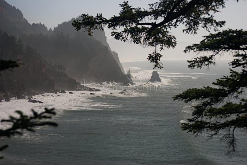 Oregon-Küste an Ecola-Nationalpark I stockfotos