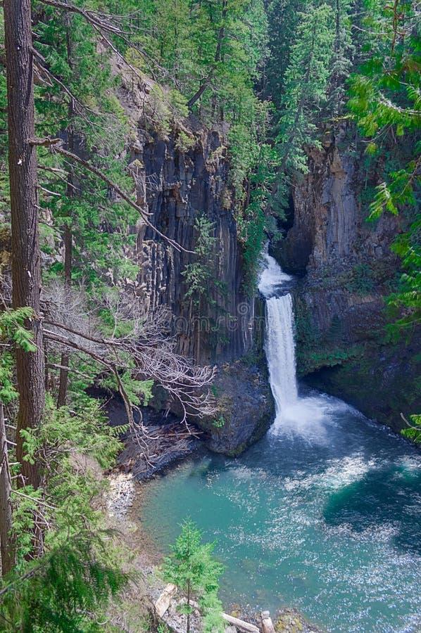 Oregon lasu byway Krajowi spadki To jest obrazek pocztówki sceneria zdjęcie royalty free