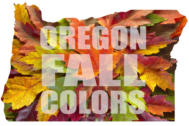 Oregon Maple Leaves Mixed Fall Colors Text USA. Oregon Maple Leaves Mixed Changing Fall Colors Text Background USA stock illustration