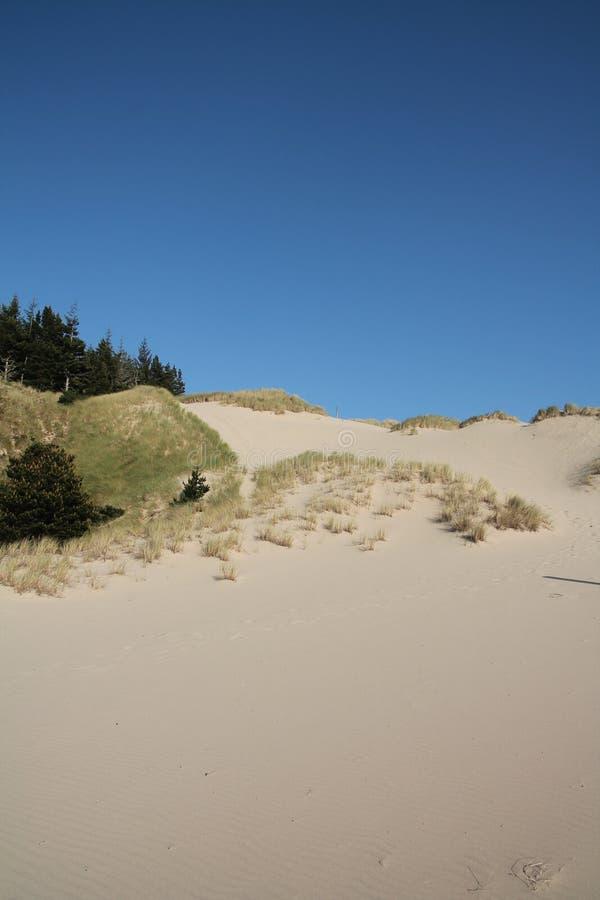 Oregon piaska diuny zdjęcia stock