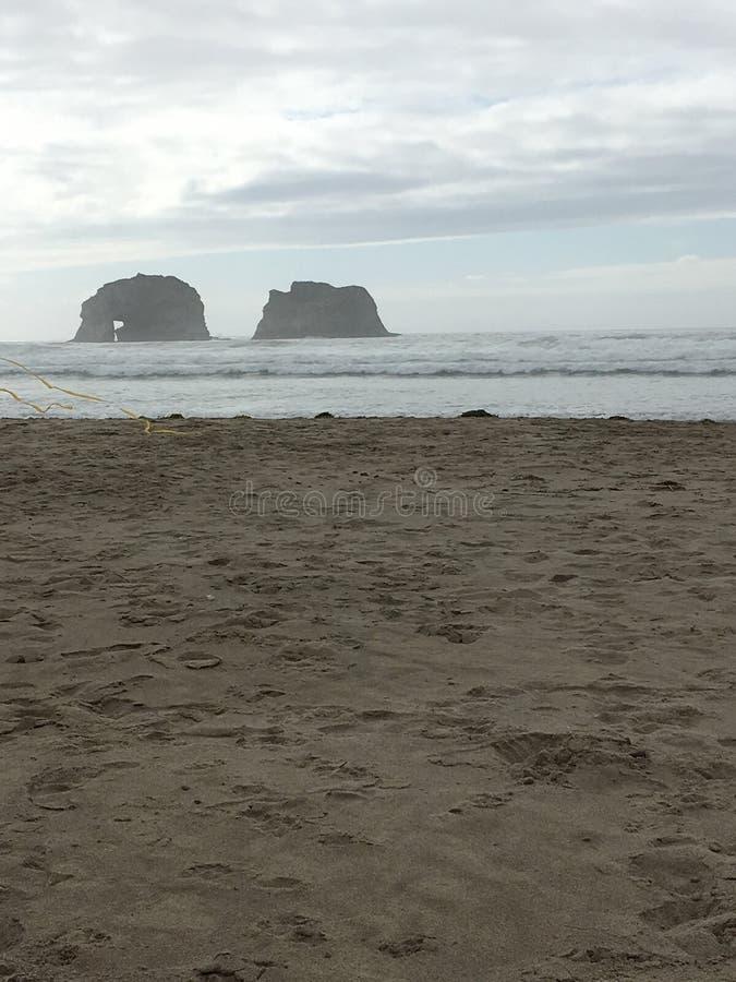 Oregon plaże obraz royalty free