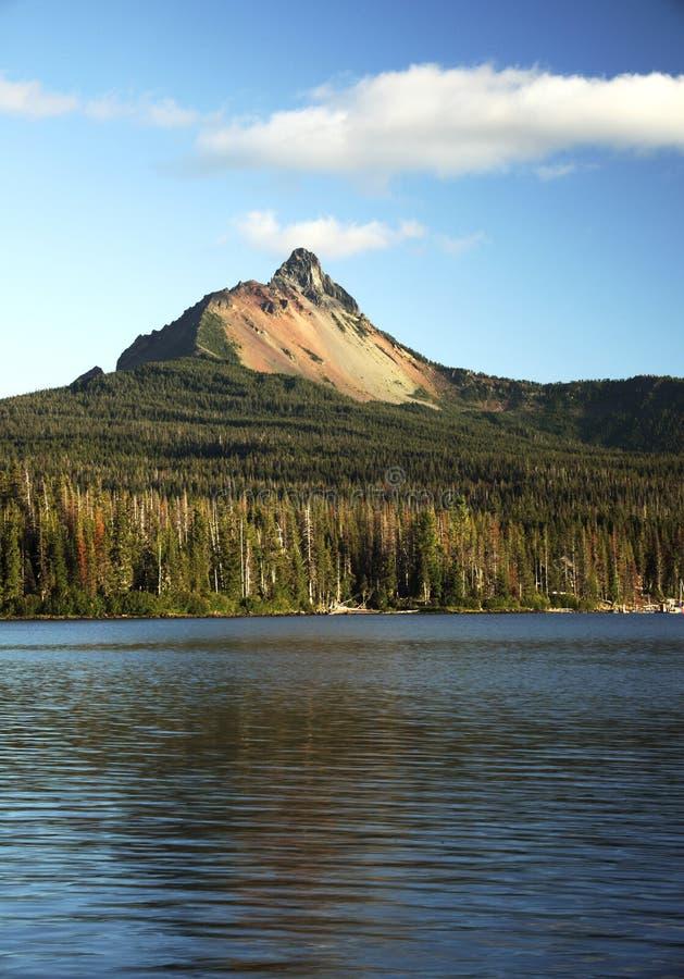 Oregon-Portrait lizenzfreie stockbilder