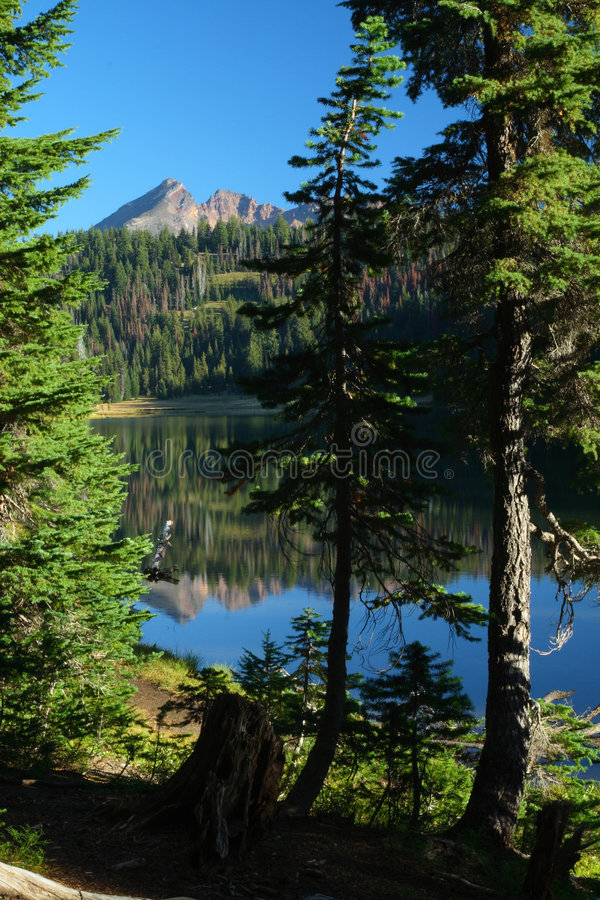 Oregon portraits stock photo
