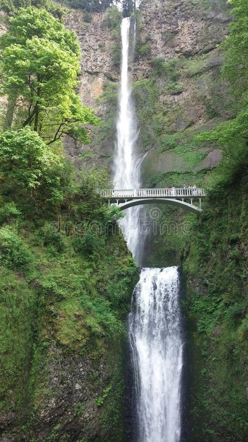 Oregon spadki zdjęcia stock