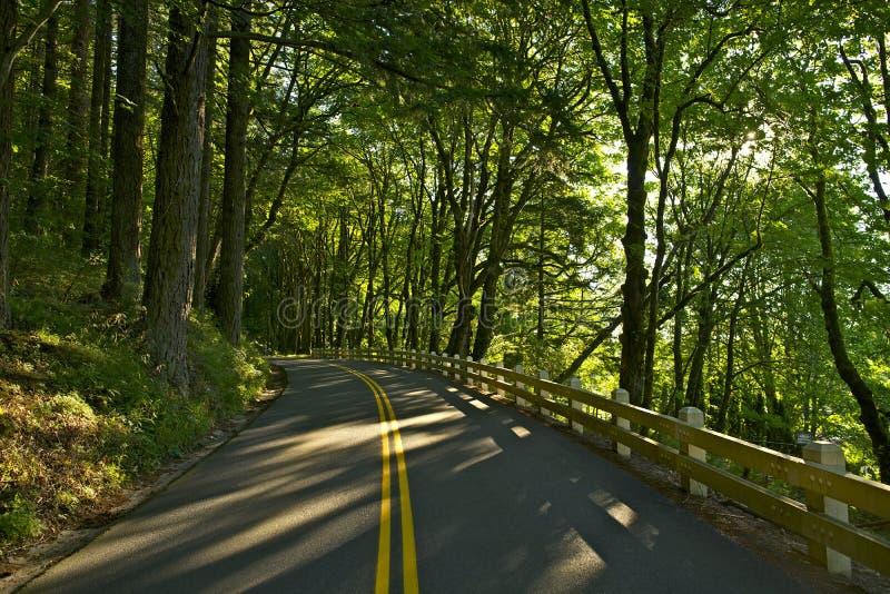 Oregon USA 30 autostrada obraz royalty free