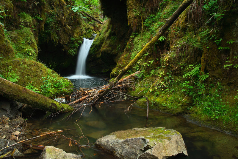 oregon vattenfall fotografering för bildbyråer