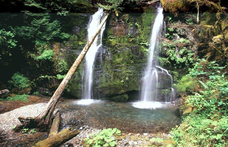 Oregon-Wasserfall stockfotografie
