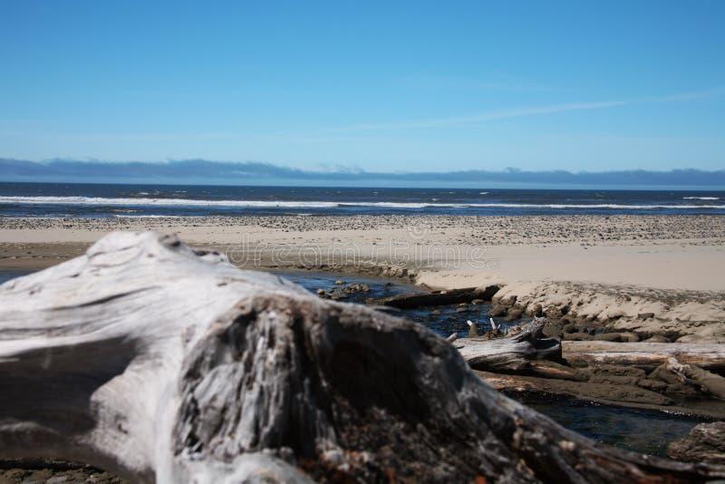 Oregon wybrzeże spokojne obrazy royalty free