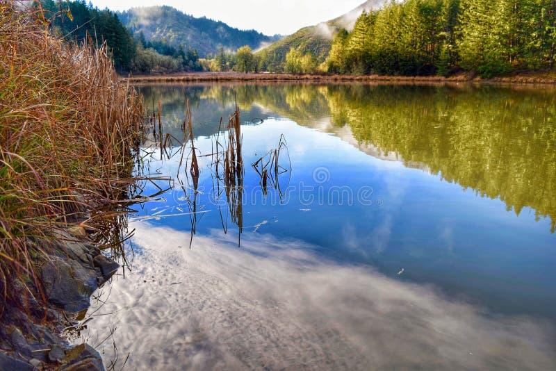 Oregon zimy kolory obraz stock