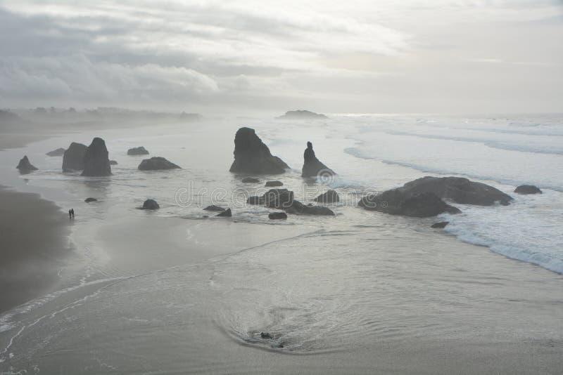 Oregonkusten söder om Bandon på en foggy-dag fotografering för bildbyråer