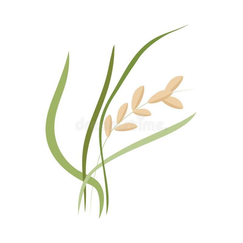 Oreille des grains mûrs de riz sur la tige avec les feuilles vertes dans le style plat illustration de vecteur