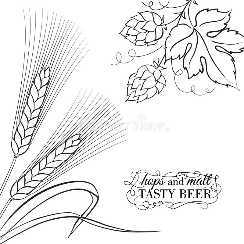 Oreille et houblon de Wwheat illustration stock